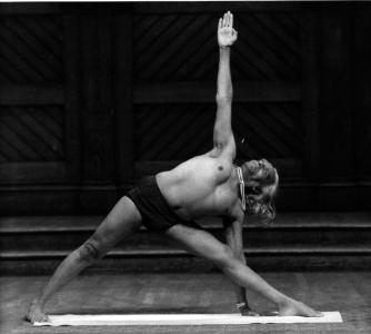 йога аенгара